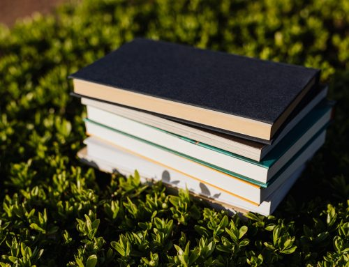 Call for Chapters: contribute to a book on Academic Staff development